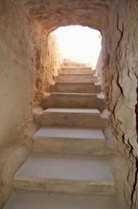 Weg aus dem Grab - Lazerus